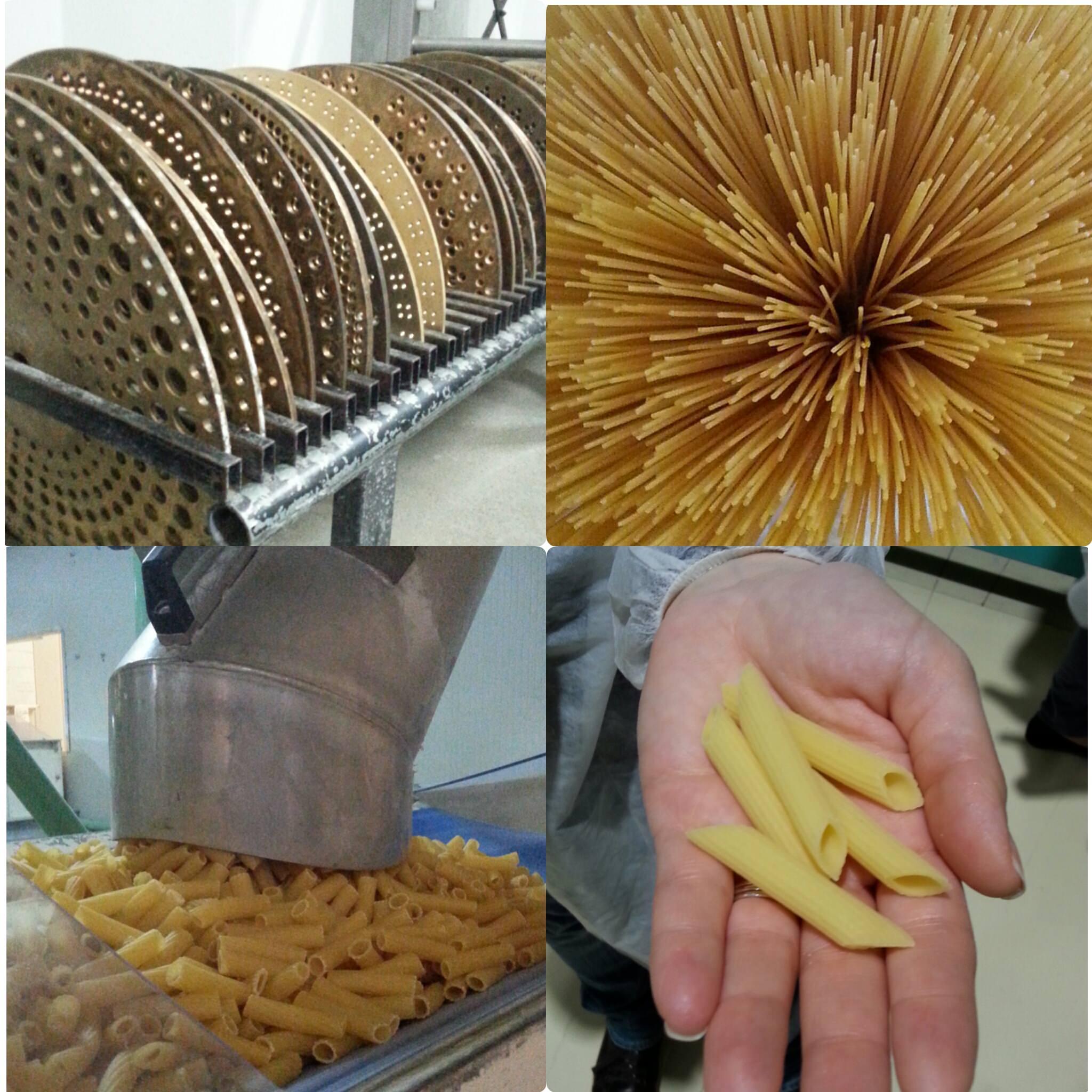 Dal grano alla pasta: pastificio La Molisana